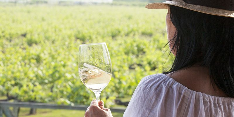 Испанское вино: несколько неожиданных винодельческих фактов